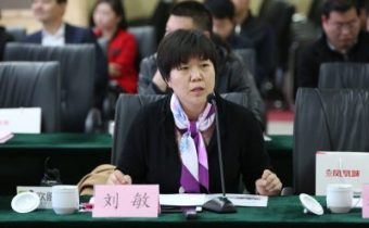 刘敏——金水区组织部副部长