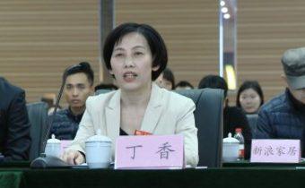 丁香——河南鑫山党委副书记、纪委书记