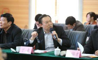 丁素——河南省委党校教授