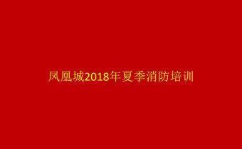 【回播】凤凰城2018年夏季消防培训